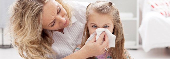 Chiropractic Chesterfield MI Your Allergies Cause And Effect
